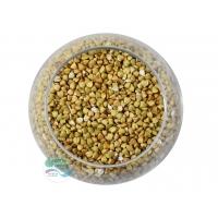 Гречка зеленая для проращивания Алтайкрупа 100 гр