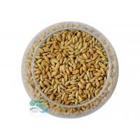 Пшеница для проращивания натуральная Алтайкрупа 100 гр